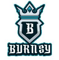 Burnsy x 95